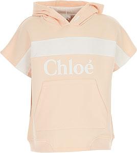 Chloé Sweatshirts & Hoodies - Spring - Summer 2021