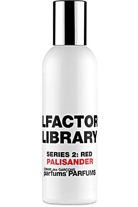 Fragrance - COLLECTION : Spring - Summer 2021
