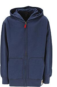 Ralph Lauren Hanorace & Bluze cu Glugă